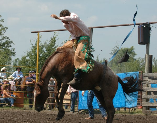 2008 North Star Stampede